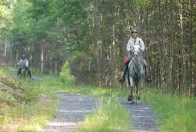 Fort Valley Endurance Ride Communications Update
